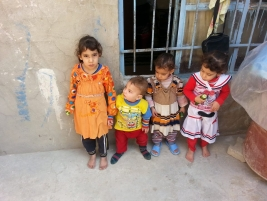 Najaf - A widow whose husband died in an accident is looking after her three children and her daughter in law and her four children. She is in desperate need of financial help to support the orphans.